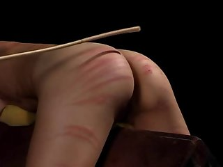 bdsm bitches